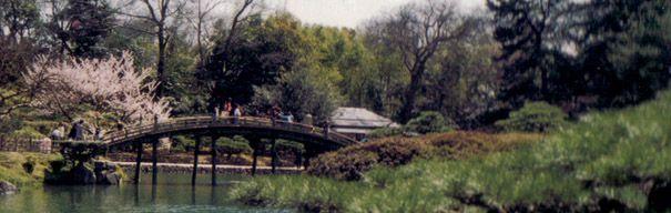 marukibashi: puente japonés redondo y de madera.丸木橋