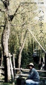 Jardinera japonesa