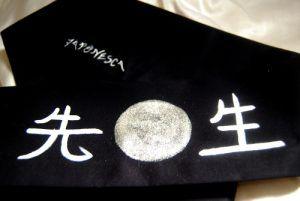 artes marciales: bandana para el maestor, Sensei.