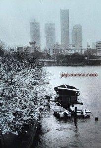 la cultura japonesa desde japonesca.ハポネスカの日本の写真集