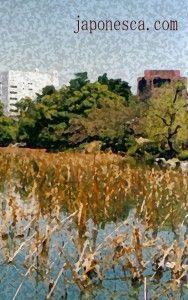 paisajes4 - copia