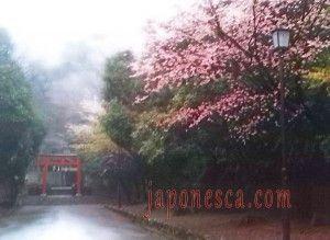 imagenes de Japón por Japonesca