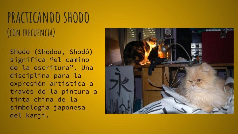 practica de caligrafía japonesa shodo